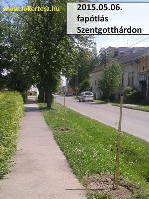 Zöldfelület-gazdálkodás kisvárosokban-fakataszter faápoláshoz